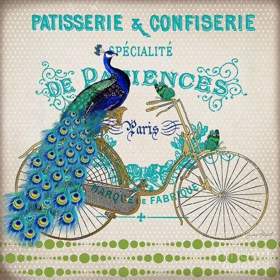 Peacock On Bicycle by Jean Plout: