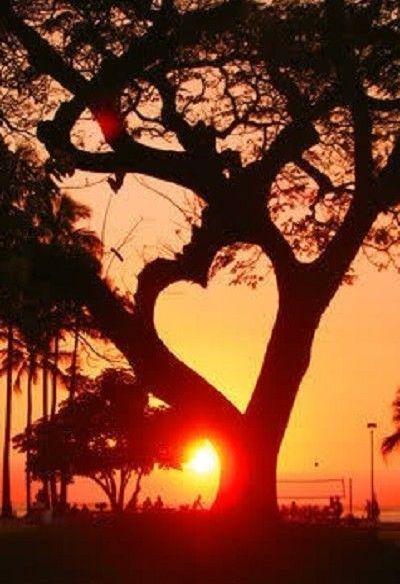 <3 Sunrise: