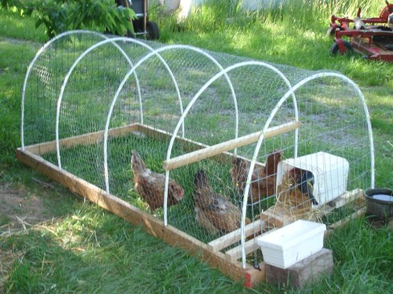 We love hoop houses coops coops and more coops for Pvc chicken tractor plans