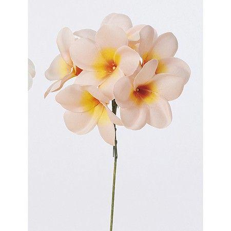 【造花】アスカ/プルメリアピック (1束6本) ピ-チ/A-32856-004【02】:造花(アーティフィシャルフラワー) の通販なら - はなどんやアソシエ