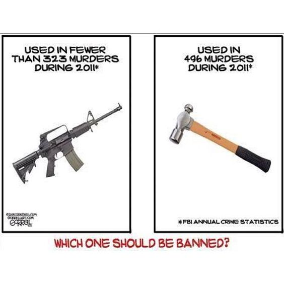 Why guns should not be banned
