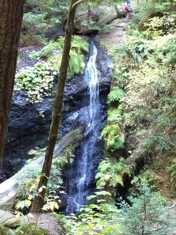 Waterfall hike - Russian Gulch State Park