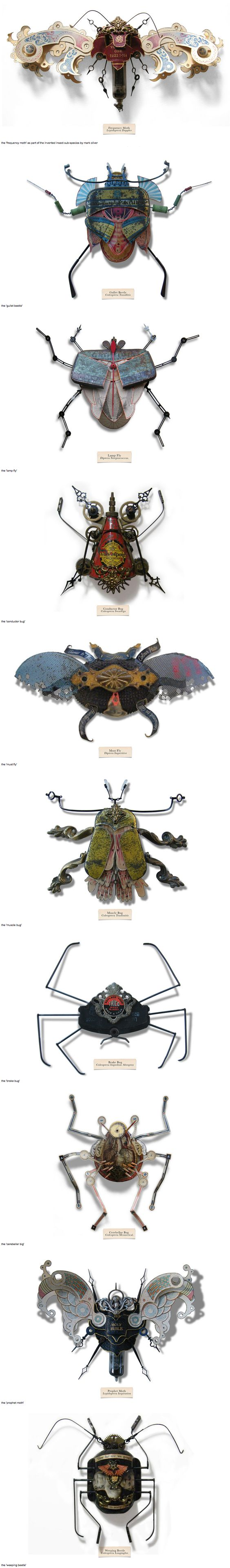 """Mark Oliver has created a series of insects called """"LitterBugs"""" brought to life entirely from trash; a species developed to adapt to the harsh, changing urban landscape. They are part of an invented genus, affectionately categorized in a document known as the """"compendium of carabid and terrestrial detritus""""  – each one having been given their own title and scientific name, some based off the found objects from which they are built.:"""
