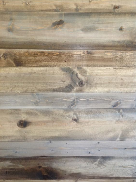 The ragged wren : Wood feature wall