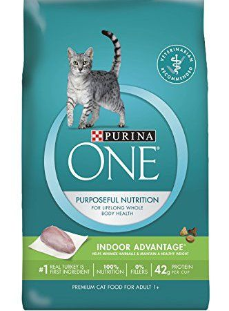 Pin On Cat Food