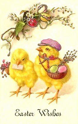 Easter chicks: