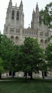 National Cathedral--stunning!