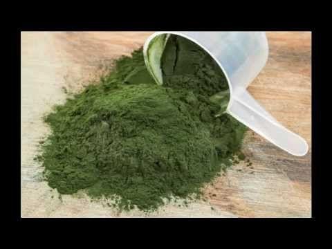 La Espirulina La Mejor Proteína Vegetal - YouTube