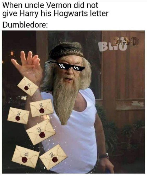 Dumbledore Meint Wenn Ein Brief Nicht Funktioniert Werden Sicher Ein Paar Hundert Reichen Brie Harry Potter House Quiz Harry Potter Jokes Harry Potter Funny