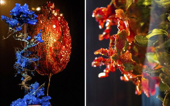 Encrusting Flora With Stabilised Crystals | Bored Panda