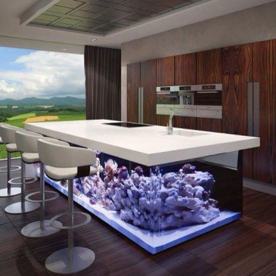Inspiring 55 Original Aquariums In Home Interiors : 55 Original Aquariums In Home Interiors With White Kitchen Table Bar Stool Sink Oven Window Curtain And Hardwood Floor