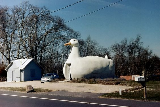 Duck building,on Long Island