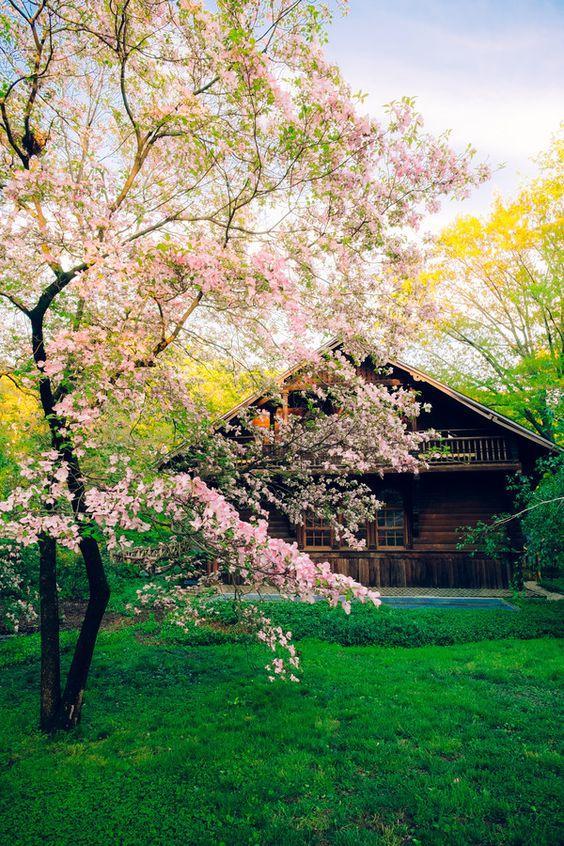 Scandia Cottage by Pistol Wish ™ on 500px