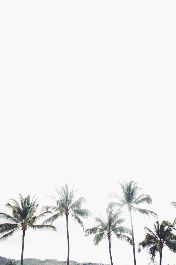 palms on palms on palms on palms on palms