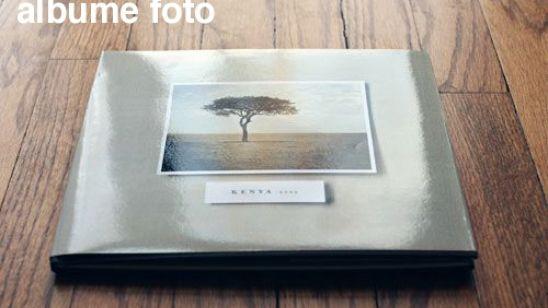 Artistul nu este nimic fără dar, dar darul nu este nimic fără muncă albume-foto.saptestele.com
