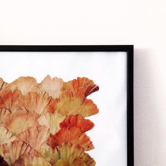 Cinquante nuances de Ginkgo Biloba  #flowleaf2015 #ginkgobiloba #autumn #fall #leaves