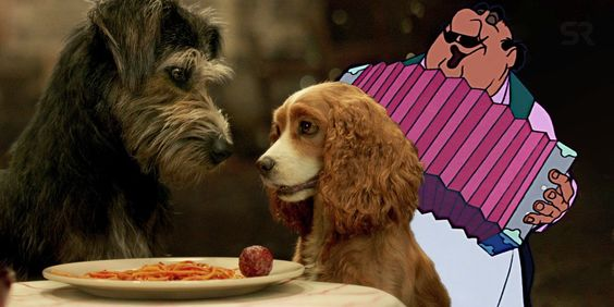 What Is The Song In The Lady The Tramp Trailer Siamese Cats Lady And The Tramp Feline