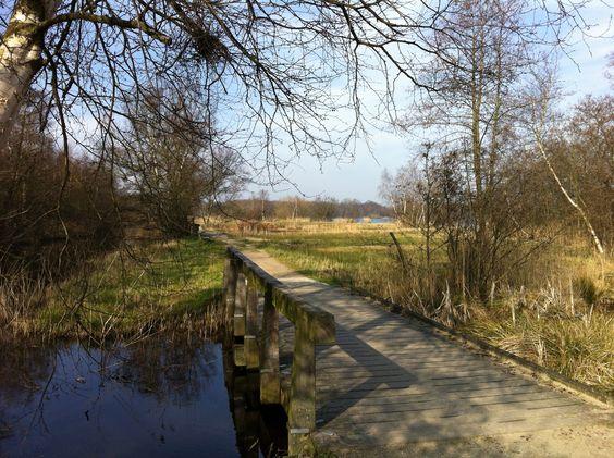 Dan langs de Poel Amstelveen/Bovenkerk.