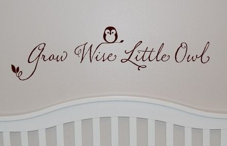 Grow Wise Little Owl Wall Decal - http://www.theboysdepot.com/grow-wise-little-owl-wall-decal.html