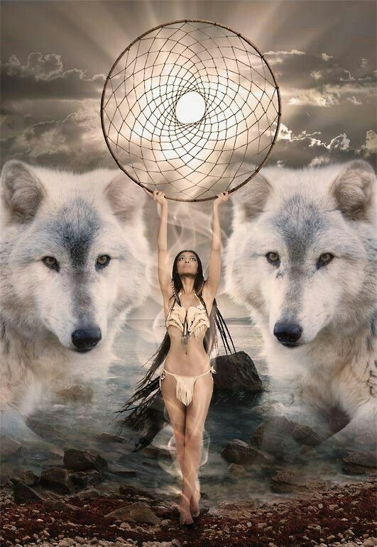 dreamcatcher native wolf spirit wallpaper - photo #29