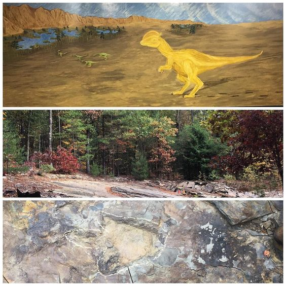 Saw real dinosaur footprints in Mass. this past weekend also. The top pic is what the area looked like when the dinosaurs roamed. The middle is what it looks like now. Bottom pic should be obvious ;)