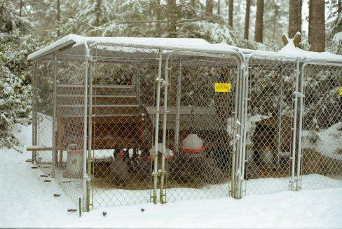 Cold Climate Chicken Coop Images Chicken Coop Designs