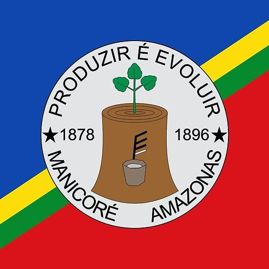 Bandeira De Manicore Amazonas Brasil Iphone Cases Long