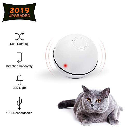 Cat Toys Ball Best Interactive Cat Toy Automatic Self Rotating And Usb Rechargeable Led Light Electronic Cat Toy Bal Interactive Cat Toys Cat Toys Cat Exercise