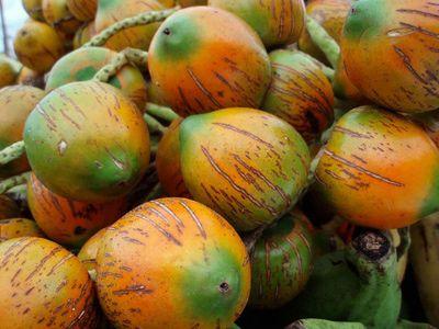 Panamá é um lugar fantástico para experimentar toneladas de frutas tropicais - incluindo aqueles não familiarizados, como o pifa (muito parecido com o de mandioca).