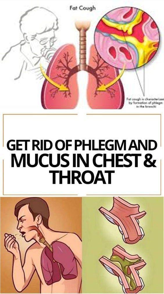 ba49613076acf7c8ab6768e091f551e2 - How To Get Rid Of Phlegm In Chest Asthma