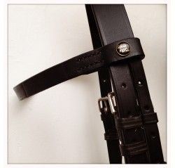 Complete bridle with martingale, noseband, cheek piece, browband and reins. All in leather. Available in black and brown