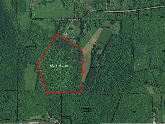 60 Acres An Outdoor Enthusiasts Dream Deepcreeklake Acre Outdoor Enthusiasts Deep Creek Lake