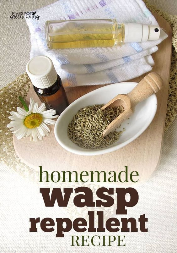 This amazingly effective homemade wasp repellent recipe has been proven to work by the National Institutes for Health! via @fivespotgrnvlvng #bee #insects #pestcontrol #homemade