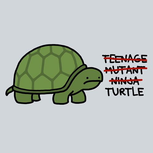 """that just leaves """"Turtle"""" then."""