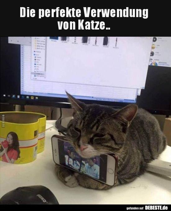 Verwendung Perfekte Lustige Bilder Sprche Lustig Katze