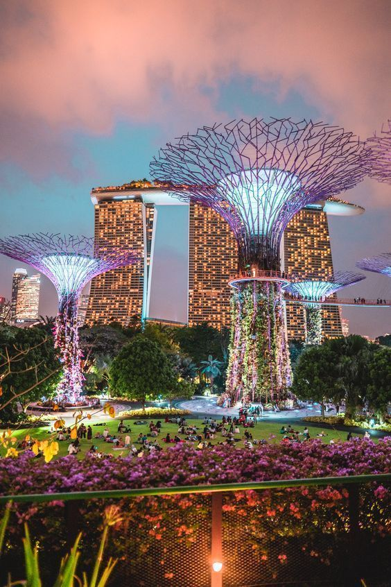 ba54ee327c0b1ba2bd90982c3ede6776 - Gardens By The Bay Singapore On Budget