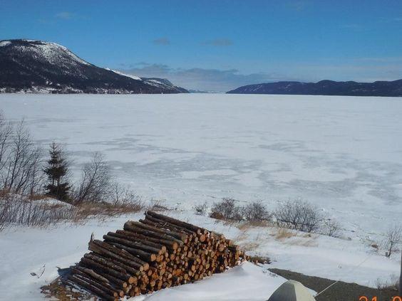 A familiar winter site in Newfoundland.
