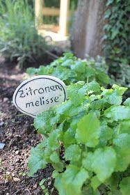 by Savanna Home and Kids handmade: Herbs, Kräuter ou ervas e temperos