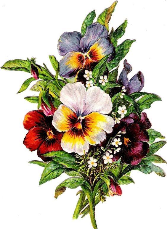 Oblaten Glanzbild scrap di ecut chromo Stiefmütterchen  14,5cm  pansy flower: