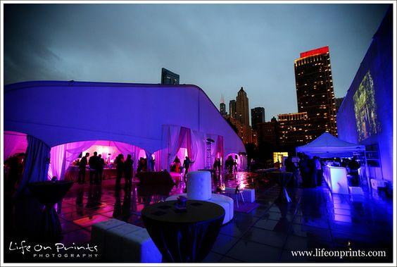 Millennium Park Rooftop Terrace Wedding evening skyline view