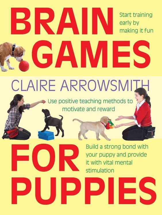 Praise for Brain Games for Dogs , by the same author: Ideal for the growing…