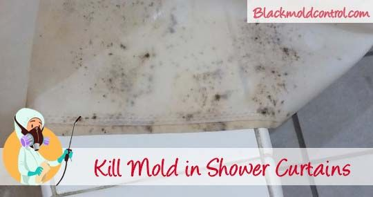 How To Remove Black Mold In Shower Curtains Remove Black Mold