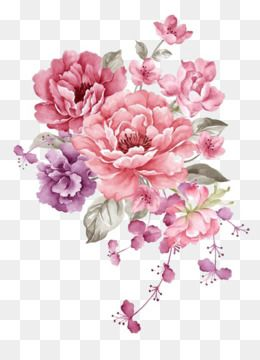 Flowers Material Watercolor Flowers Pink Flowers Fresh Literature And Art Flower Printing Flo Watercolor Flower Background Flower Pattern Drawing Floral Poster
