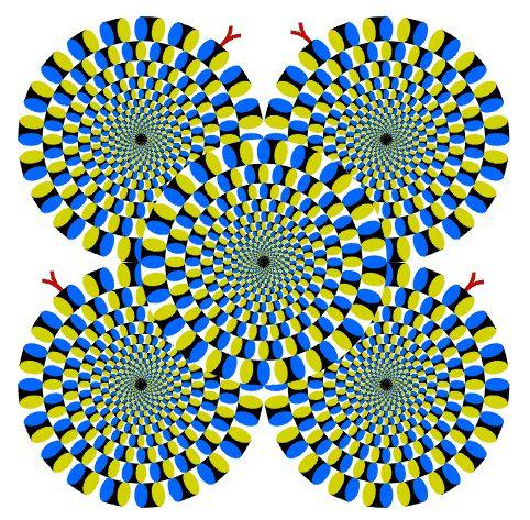 circulos que giran