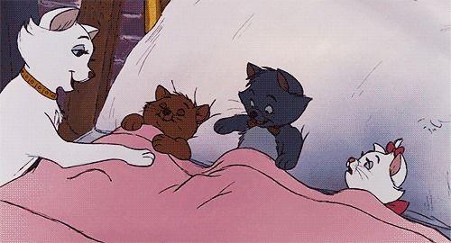子猫を寝かしつけるダッチェス