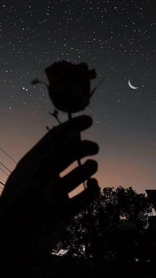 When The Moon Falls In Love With The Sun Fond D Ecran Telephone Photographie D Ombre Photo Ecran