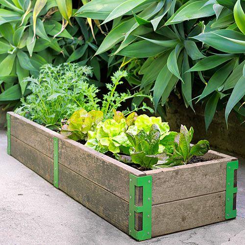 Scout Regalia Garden Kits - build your own raised beds
