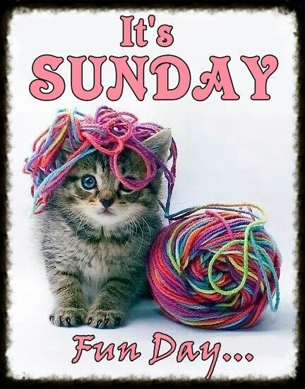 268937-Its-Sunday-Fun-Day.jpg (432×550):