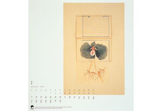 EXPO 2005 AICHI   HARA DESIGN EXPO 2005のポスターには、愛知県に所蔵されていた江戸時代の博物図絵、高木春山筆『本草圖説』をモチーフとして使用した。『本草圖説』の目は科学的・分析的であるというよりも、自然に対する素直な畏敬の念を感じさせる。その視点がEXPO 2005のコンセプトに合致すると考えた。ポスターやパンフレットでは『本草圖説』の図像に独自の造形を加えて現代性を加味している。