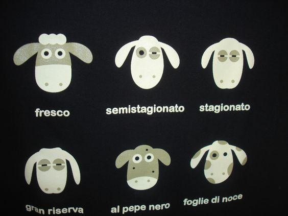 Le pecore della maglietta di Montepulciano